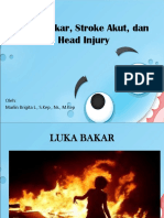 2 Luka Bakar, Stroke Dan Head Injury