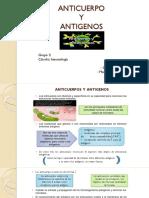 Anticuerpo y Antigeno