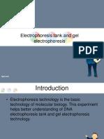 Electrophoresis Tank and Gel Electrophoresis