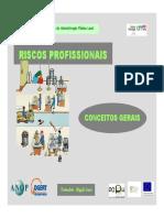 Riscos Profissionais - Conceitos Gerais.pdf