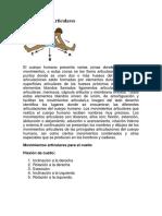 Movimientos Articulares.docx