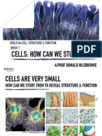 Week 1 Lecture 2 - Cells and Functions (How can we study cells?)