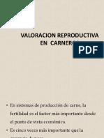 VALORACION REPRODUCTIVA CARNEROSFQ.pptx