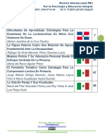 Revista Internacional Pei No. 13 Julio-A (1)