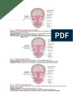 3. Mer ST_3-1.pdf
