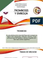 trombosisyembolia-160129031113