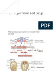 2-Embryo Cardio and Lungs
