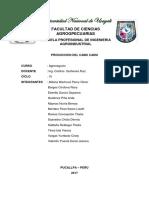 AGRONEGOCIOS-CAMU-CAMU.docx