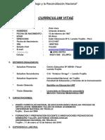 Curriculum Vitae Polo Vera