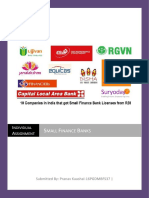 Indivisual Assignment- Small Finance Banks