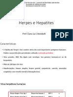 Aula - Hepatites