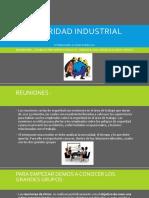 Seguridad Industrial - Alison Tandazo