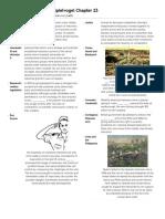 APEuro -- AP Exam -- Study Guide -- Mr Glasner | Renaissance