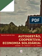 Maurício-Sardá-Autogestão-Cooperativa-e-Economia-Solidária.pdf