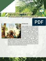 cuentos_selva2