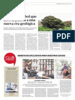 Diario La Tercera de Santiago, Chile 25-02-2018 El Solitario Árbol Que Abre La Puerta a Una Nueva Era Geológica.
