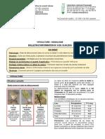 16 ART 00P Bulletin Viticole Vaudois 4 19-04-16