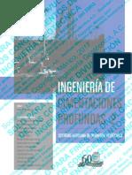 SMIG - Ingeniería de Cimentaciones Profundas Tomo 2