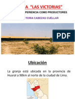 GRANJA- Las Victorias