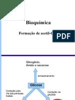 2_piruvato_acetil.pdf