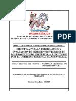 Proy-para La Formulacion y Evaluacion- De Expedientes Tecnicos- 14-6-2017 (1)