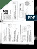 Ze Pedro1.pdf
