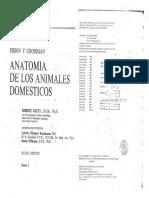 Anatomia Veterinaria de Los Animales Domésticos - Sisson y Grossman Tomo 1