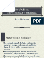 Power Point de Metabolismo