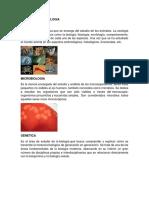 Ramas de La Biologia y La Spicologia