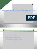 5 Phytoremediation for Heavy Metal