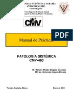 10.0 Manual Prácticas CMV 463 2018