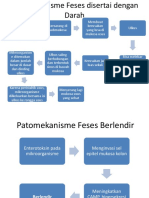 Patomekanisme Feses Disertai Dengan Darah