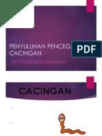 238917810-cacingan