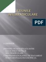 257435977-LEZIUNILE-INTERRADICULARE