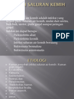 INFEKSI SALURAN KEMIH Dr.Jaminsen.pptx