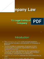T1-Legal Entity of a Company