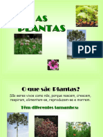 apresentaoplantas-120622055312-phpapp02.pdf