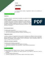 AUDIT DE TR.pdf