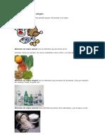 Alimentos por su origen.docx