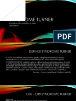 Tutorial 1.1 Syndrome Turner