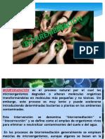 biorremedidacion 3.1.pptx