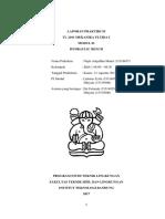 Laporan Mekanika Fluida Modul 1