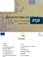 животни циклус пчеле.pdf