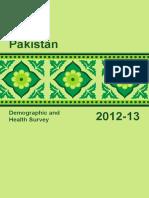 2012-13 PDHS Final Report.pdf