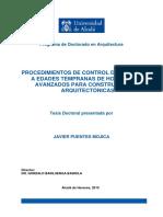 Tesis Javier Puentes