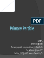 Primary Particle