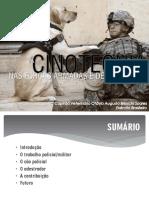 A Cinotecnia No Brasil Abertura Cespadestcc3a3es 2016