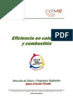 eficiencia en calderas y combustion.pdf