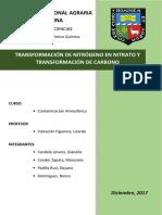 Informe Nitrogeno y Carbono