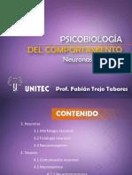 0.0.3 Psicobiología-neuronas y Sinapsis